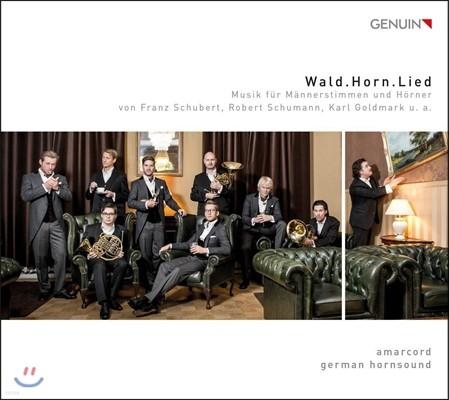 Amarcord / German Hornsound 숲, 호른, 노래 - 슈베르트 / 슈만 / 골트마르크: 남성 보컬과 4대의 호른을 위한 음악 (Wald. Horn. Lied - Schubert / Schumann / Goldmark: Music for Male Voices & Horns) 아마르