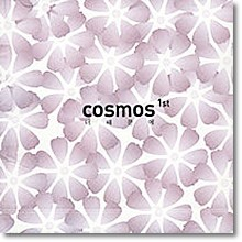 Cosmos (코스모스) - 1집 - 너 때문에