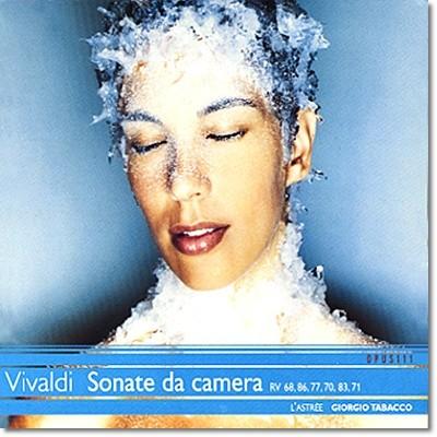 비발디 : 소나타 다 카메라