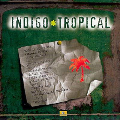 Indigo & Tropical (인디고 트로피컬)