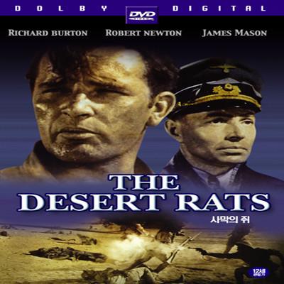 사막의 쥐