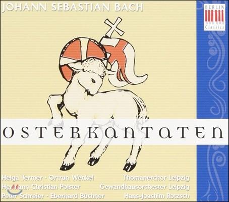 Thomanerchor Leipzig 바흐: 부활절: 칸타타 (Bach: Easter Cantatas BWV 4, 31, 134)
