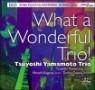 Tsuyoshi Yamamoto Trio (츠요시 야마모토 트리오) - What a Wonderful Trio! [DXD]