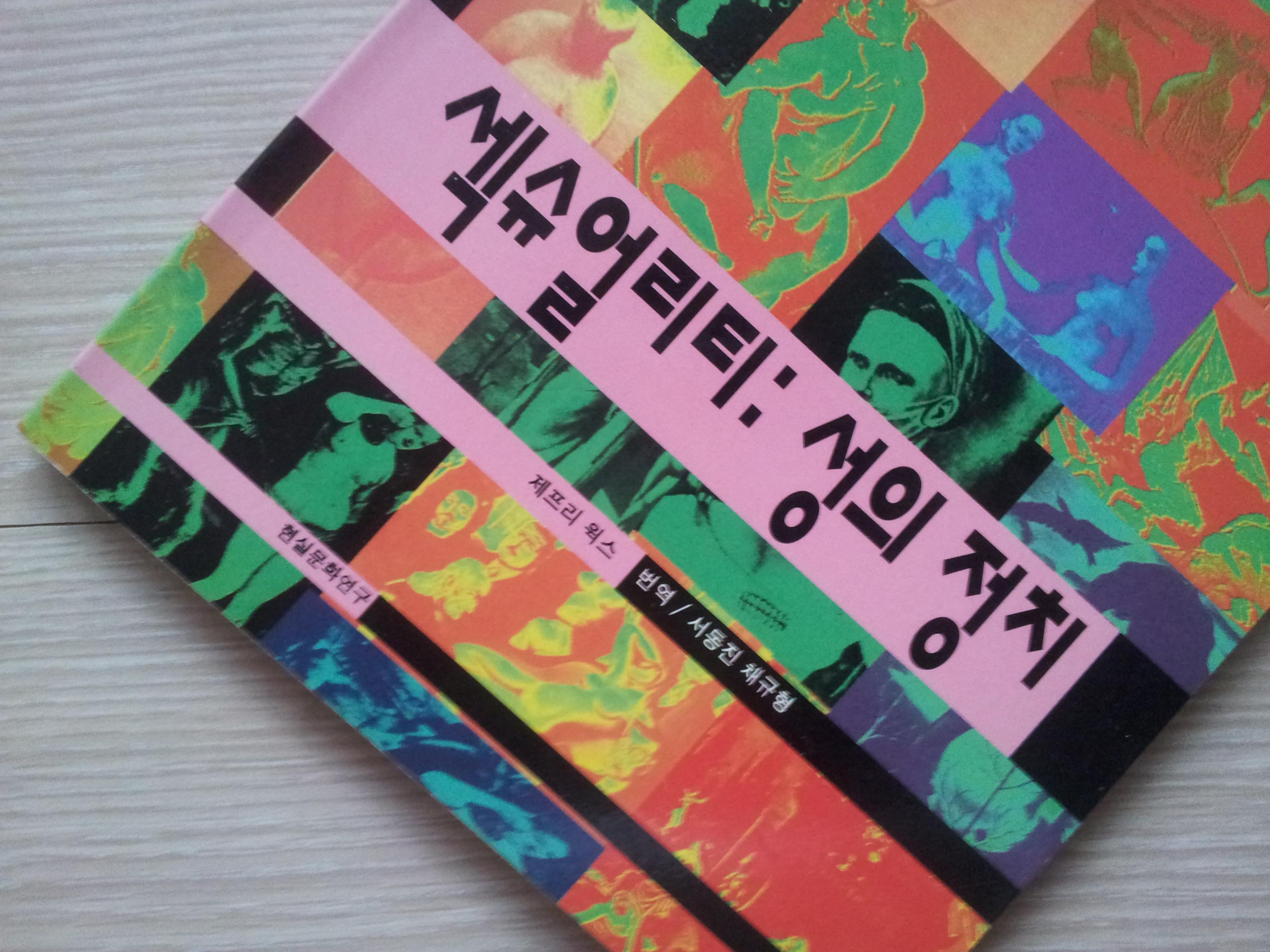 섹슈얼리티 성의 정치 1994년판