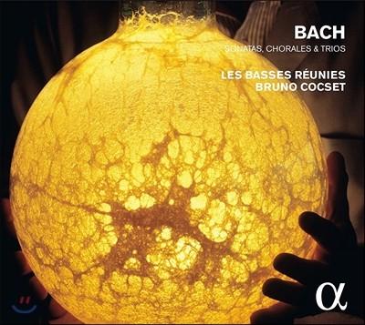 Les Basses Reunies 바흐: 비올라 다 감바 소나타, 코랄, 트리오 (J.S. Bach: Sonatas, Chorales & Trios) 브루노 콕세, 레 바스 레위니
