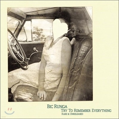 Bic Runga - Try To Remember Everything