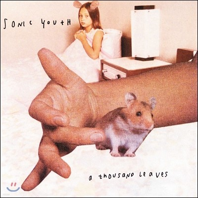 Sonic Youth (소닉 유스) - A Thousand Leaves [2LP]