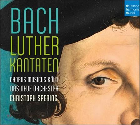 Christoph Spering 바흐: 루터 칸타타 (J.S. Bach: Luther Cantatas) 크리스토프 슈페링, 쾰른 무지쿠스 합창단