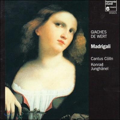 Cantus Colln 지아체스 데 베르트: 마드리갈 (Giaches De Wert: Madrigaux)