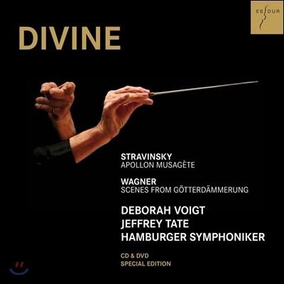 Jeffrey Tate 디바인 - 스트라빈스키: 뮤즈를 이끄는 아폴로 / 바그너: 신들의 황혼 명장면 (Stravinsky: Apollon Musagete / Wagner: Scenes from Gotterdammerung) 제프리 테이트, 함부르크 교향악단