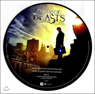 신비한 동물사전 영화음악 (Fantastic Beasts And Where To Find Them OST by James Newton Howard 제임스 뉴튼 하워드) [12인치 픽쳐디스크 LP]