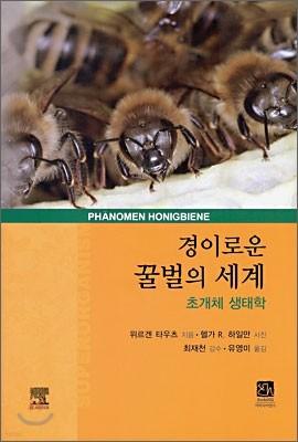 경이로운 꿀벌의 세계