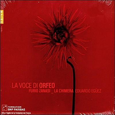 Furio Zanasi 오르페오의 목소리 (La Voce di Orfeo: A tribute to Francesco Rasi)