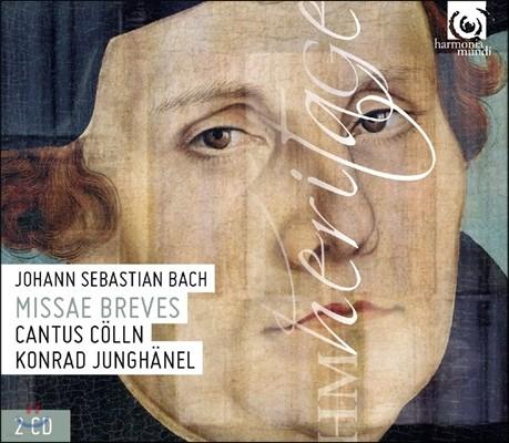 Cantus Colln / Konrad Junghanel 바흐: 미사 브레비스 BWV 233, 234, 235, 236 - 루터 미사 (J.S. Bach: Missae Breves - Rutheran Masses) 칸투스 쾰른, 콘라트 융해넬