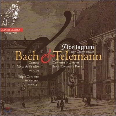 Florilegium / Lucy Crowe 바흐: 칸타타 209번, 삼중 협주곡 / 텔레만: 협주곡 (J.S. Bach: Cantata BWV209 & Triple Concerto BWV1044 / Telemann: Concerto from Tafelmusik)
