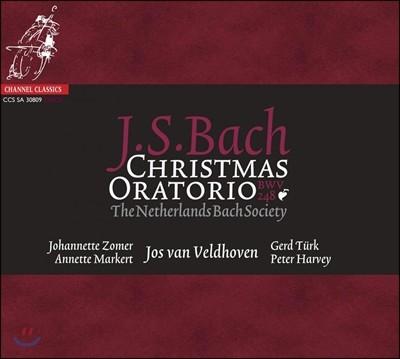 Netherlands Bach Society 바흐: 크리스마스 오라토리오 (Bach: Christmas Oratorio, BWV248)