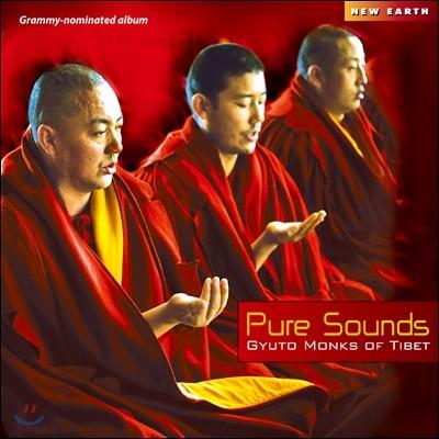 Gyuto Monks of Tibet (규토승원 스님들) - Pure Sounds