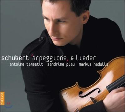 Antoine Tamestit 슈베르트: 아르페지오네 소나타 [비올라 연주반]