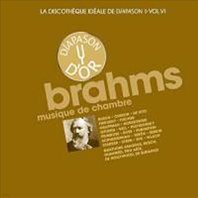 브람스: 실내악 작품집 (Brahms: Musique de Chambre) (12CD Boxset) - 여러 아티스트