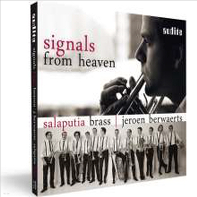 음?의 진화 (Sounds Of Evolution) - Salaputia Brass