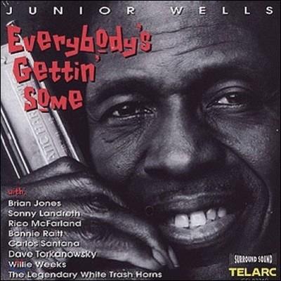 Junior Wells (주니어 웰즈) - Everybody's Gettin Some