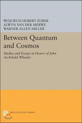Between Quantum and Cosmos