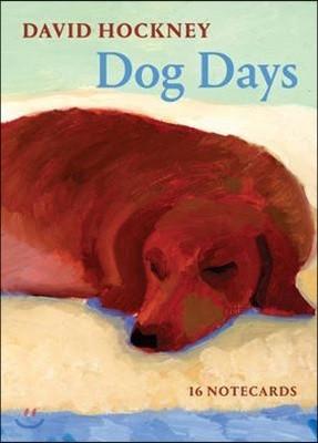 David Hockney Dog Days Notecards : 데이비드 호크니 그림 엽서 세트
