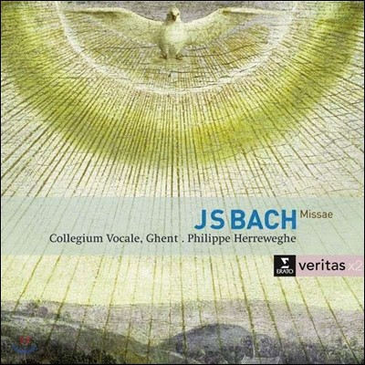 Philippe Herreweghe 바흐: 미사 (Bach: Masses BWV233-236)