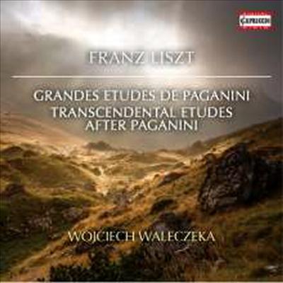 리스트: 파가니니 대 연습곡 1-6번, 초절기교 연습곡 1-6번 (Liszt: Grand Etudes De Paganini Nr.1-6 & Etudes D'execution Transcendante Nr.1-6)(CD) - Wojciech Waleczek