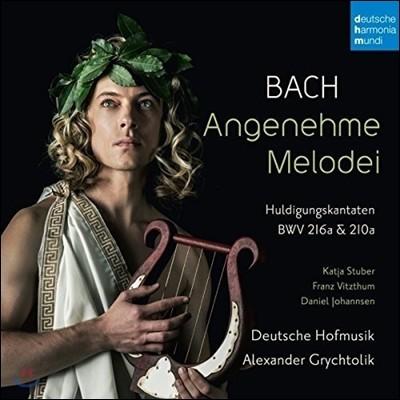 Deutsche Hofmusik / Alexander Grychtolik 바흐: 오마주 칸타타 (Angenehme Melodei - J.S. Bach: Huldigungskantaten 216a & 210a) 알렉산더 그뤼히톨리크, 도이치 호프무지크