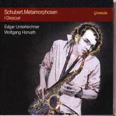슈베르트: 겨울 나그네 - 색소폰 편곡반 (Schubert - Winterreise D.911 for Saxophone & Piano -Metamorphosen) - I Dioscuri