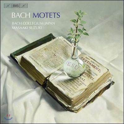 Masaaki Suzuki 바흐: 모테트 (Bach: Motets BWV 225, 229, 227, 230, 228, 158, 226, 118)