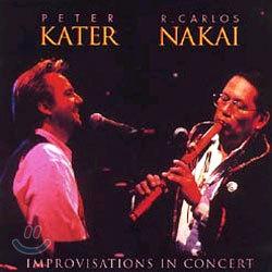 Peter Kater & R. Carlos Nakai - Improvisations In Concert