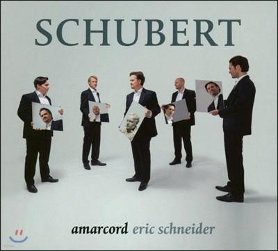 Amarcord 슈베르트: 남성 합창 작품집 - 앙상블 아마코드, 에릭 슈나이더 (Schubert: Choral Works)