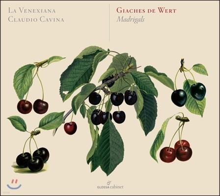 La Venexiana 지아체스 데 베르트: 마드리갈 작품집 - 라 베넥시아나, 클라우디오 카비나 (Giaches de Wert: Madrigals)