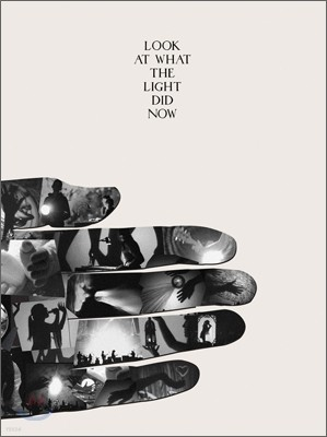 Feist - Look At What The Light Did Now (DVD Size Limited Edition)