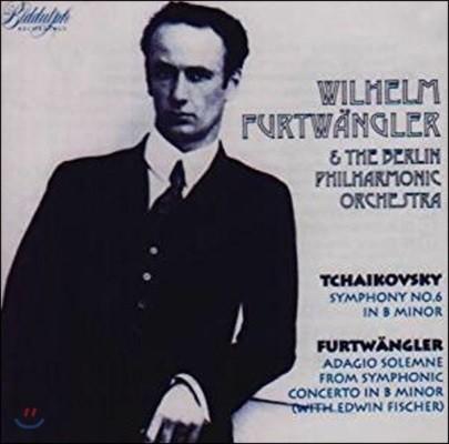 Wilhelm Furtwangler 제 2차 세계대전 이전의 HMV 레코딩 전집 - 베를린 필하모닉 오케스트라, 빌헬름 푸르트뱅글러 (Complete Pre-War HMV Recordings)