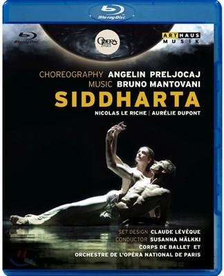 Ballet de L'Opera national de Paris 파리 국립 오페라 발레단의 `싯다르타` (Mantovani, B: Siddharta
