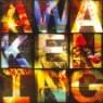 V.A. / Passion 2010: Awakening (미개봉)