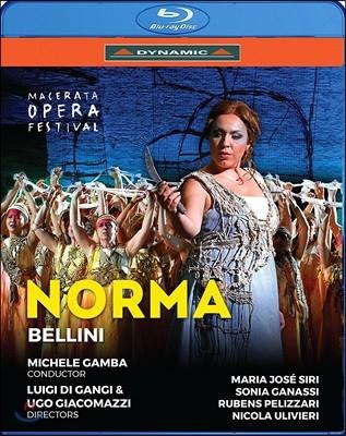 Michele Gamba / Maria Jose Siri 벨리니: 노르마 (Bellini: Norma)