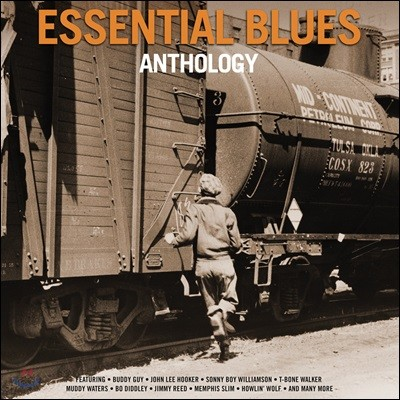 블루스 명연 모음집 (Essential Blues Anthology) [2LP]