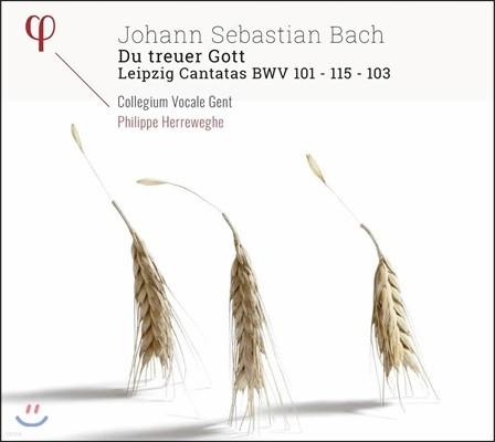 Philippe Herreweghe 바흐: 진실한 주여 - 라이프치히 칸타타 작품집 (J.S. Bach: Du Treuer Gott - Leipzig Cantatas BWV101, 115 & 103)