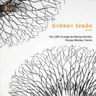 죄르지 세복 - 피아노 리사이틀 1991 (The 1991 Grange de Meslay Recital) - Gyorgy Sebok