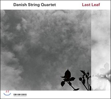 Danish String Quartet 덴마크 민속음악 연주집 - 마지막 잎새 (Last Leaf)