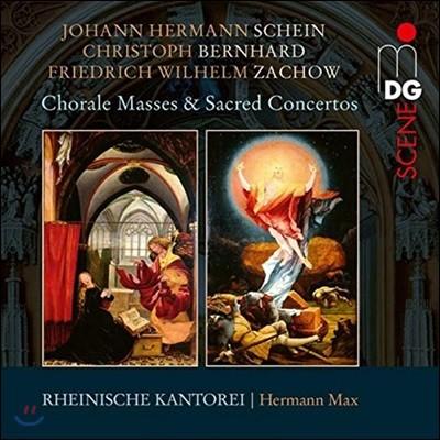 Rheinische Kantorei 샤인 / 베른하르트 / 차하우 / 피셔: 독일 바로크 합창 & 미사곡 모음집 (Chorale Masses & Sacred Concertos)