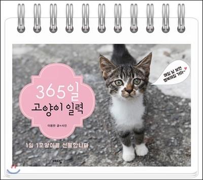 365일 고양이 일력