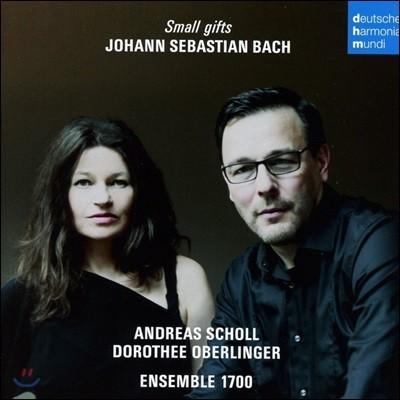Andreas Scholl / Dorothee Oberlinger 바흐: 유명 칸타타와 브란덴부르크 협주곡 (Small Gifts - Johann Sebastian Bach)