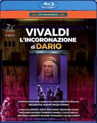 Ottavio Dantone / Carlo Allemano 비발디: 오페라 '다리오의 대관식' - 레지오 토리노 극장 실황 (Vivaldi: L'Incoronazione di Dario)