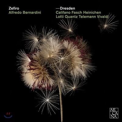 Zefiro 드레스덴궁의 음악가들 - 비발디 / 텔레만 / 파슈 / 로티 / 크반츠 / 칼리파노 (Dresden - Califano / Fasch / Heinichen / Lotti)