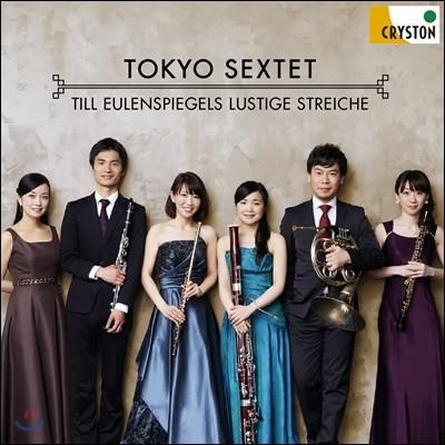 Tokyo Sextet 슈트라우스: 틸 오일렌슈피겔의 유쾌한 장난 - 관악 육중주 연주반 (R. Strauss: Till Eulenspiegels Lustige Streiche)